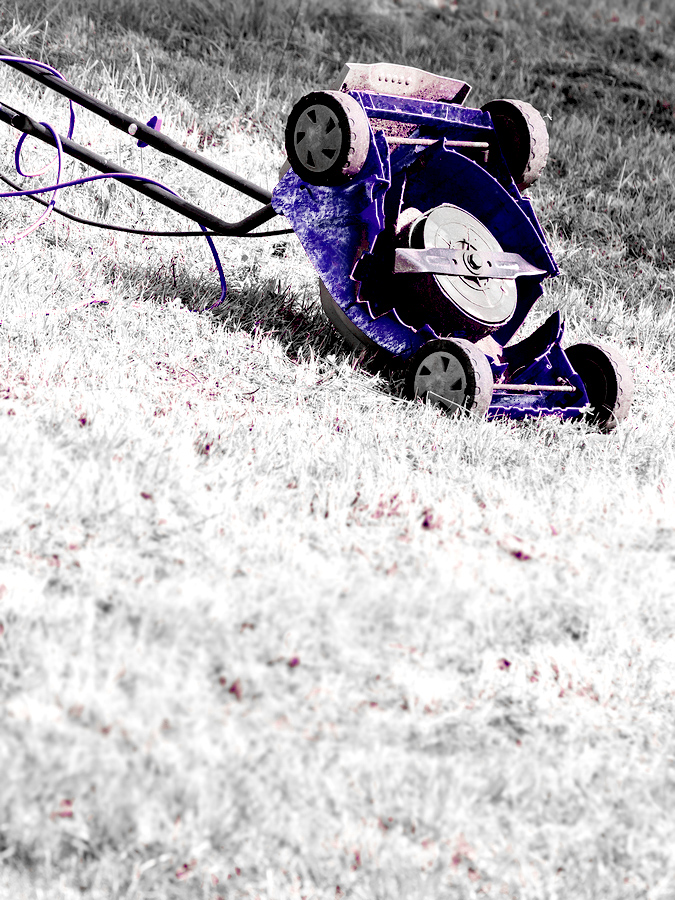 Lawn mower sitting in frosted grass