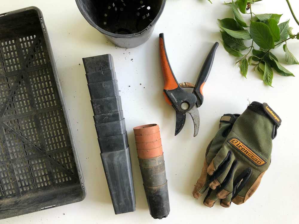 Winter gardening tools