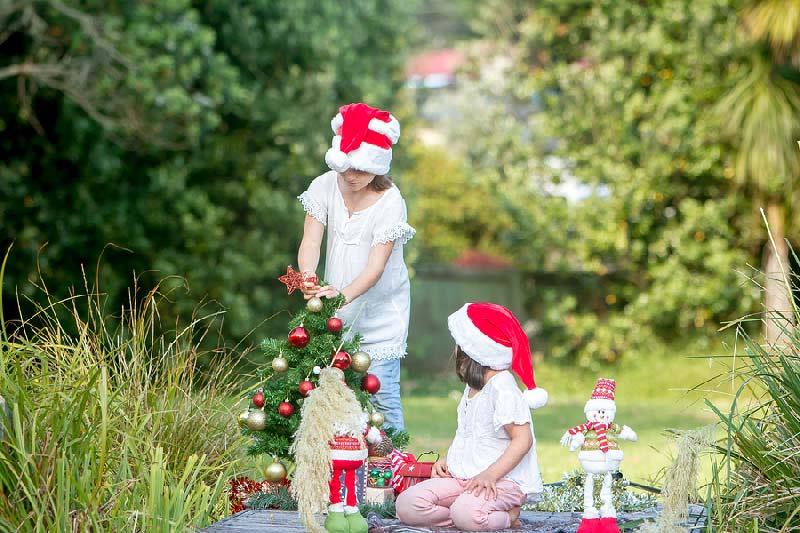 christmas-backyard.jpg