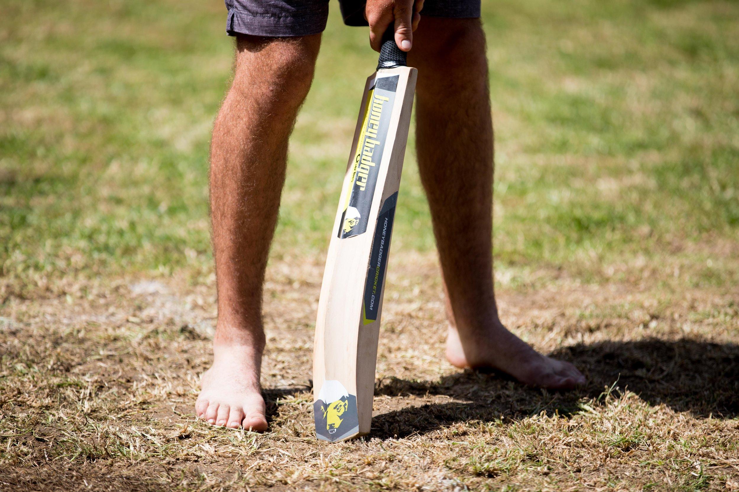 backyard-cricket.jpg