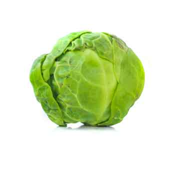 Brussel-sprout.jpg