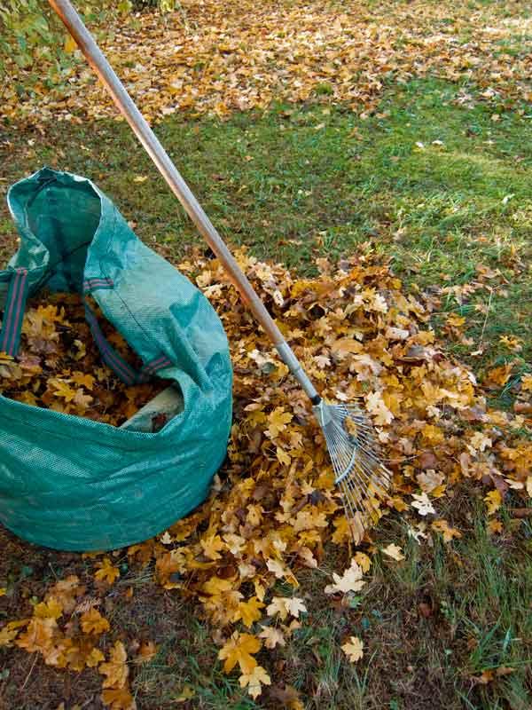 green-waste.jpg
