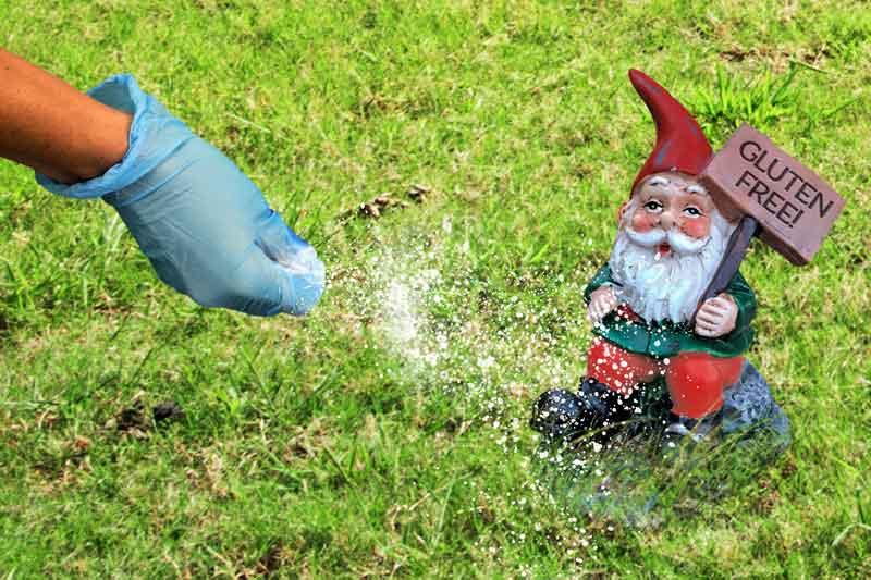 Gluten-Gnome.jpg
