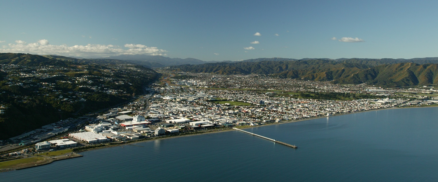 Hutt Valley Business for Sale
