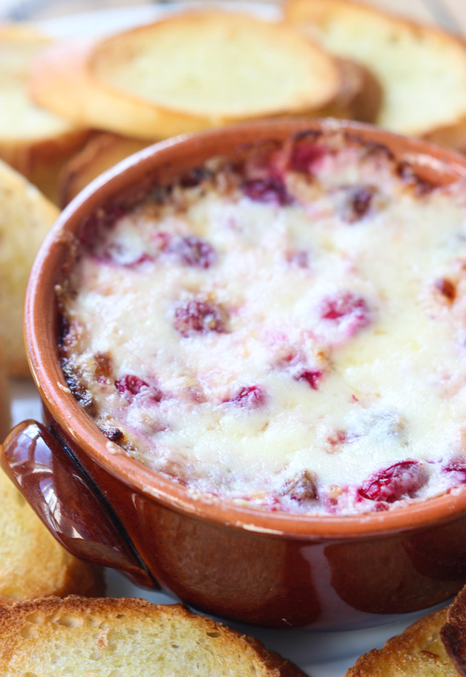 White Cheddar Cranberry Dip - This is my friend, Dillar's recipe. (See the story of how we know each other in any of her posts under