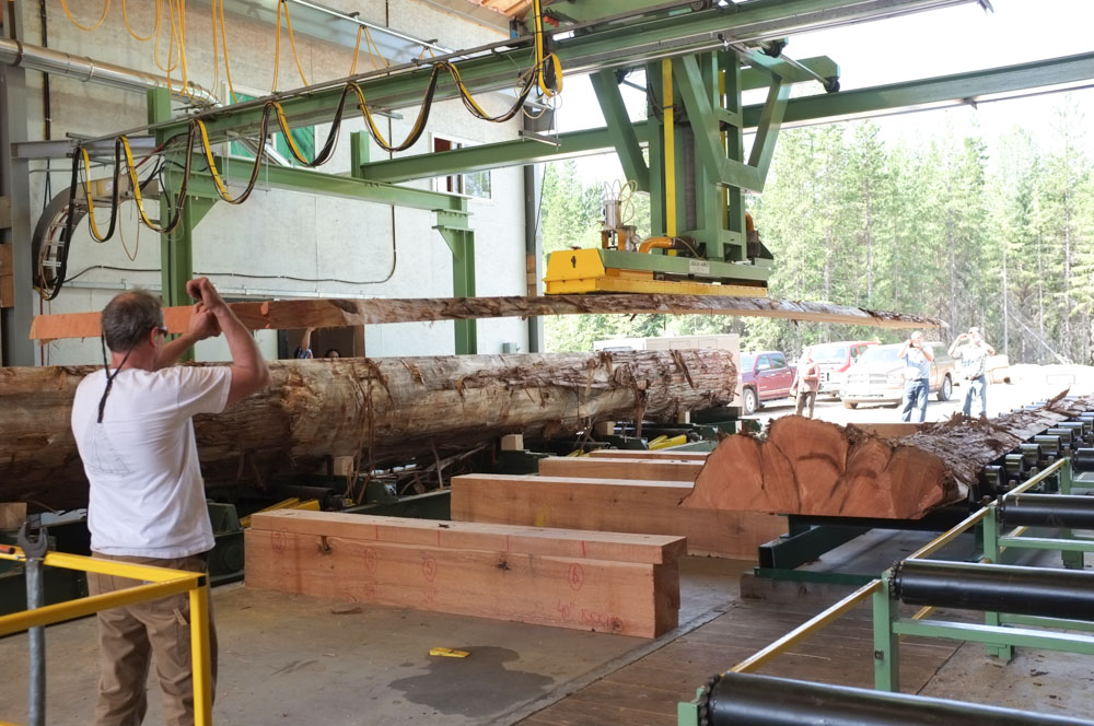 vacuum-robot-handling-by-JCI-Touchwood-Sawmills.jpg
