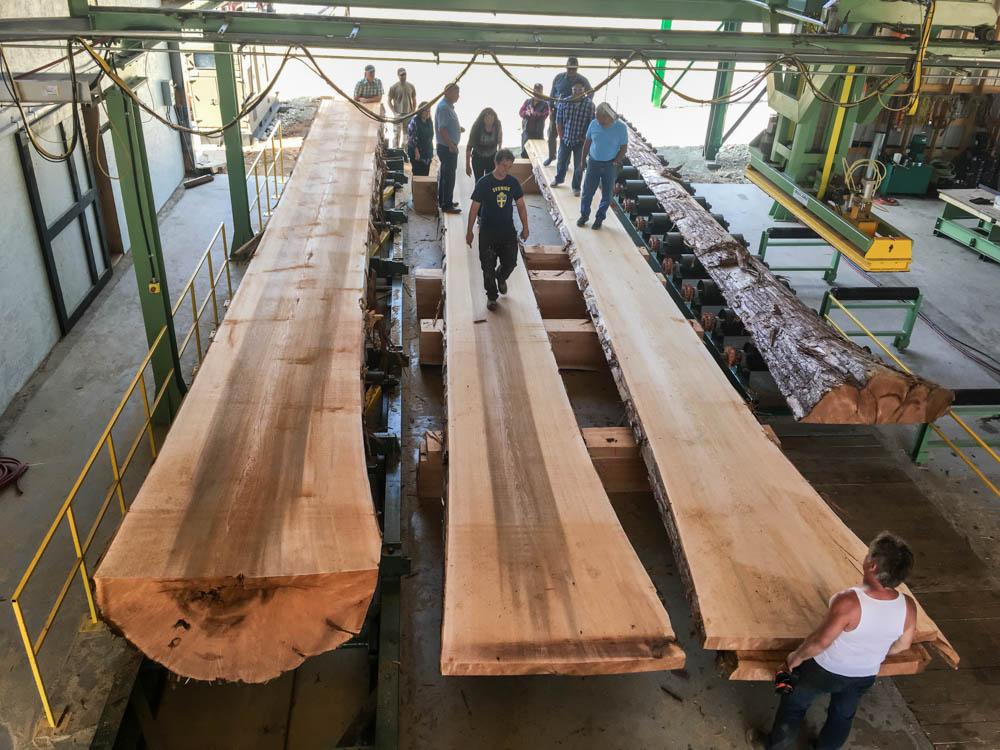 JCI-Touchwood-Sawmills-western-red-cedar.jpg