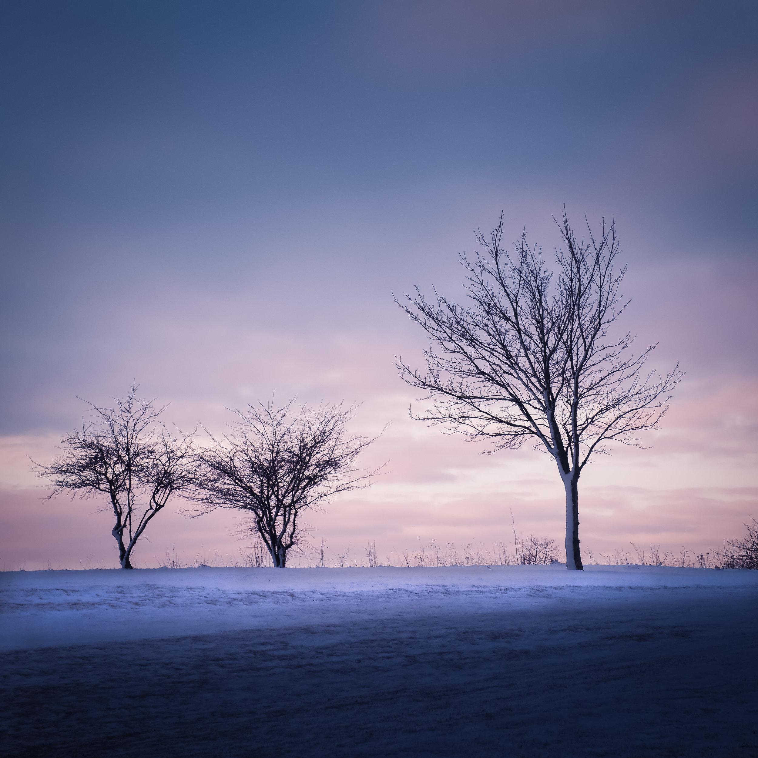 osterlen gk winter 12.jpg
