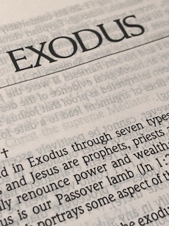 """God said to Moses, """"I am who I am."""" And he said, """"Say this to the people of Israel: 'I am has sent me to you.'""""  - Exodus 3:14"""