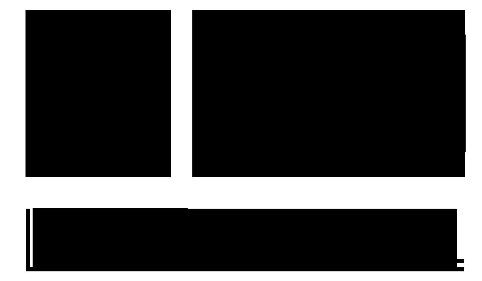 Med New Logo.png