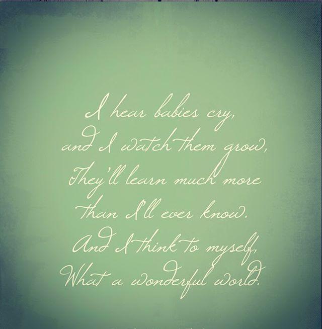 My #babies are so big😭#momlife #motivationmonday #lyrics #hamptons #summer