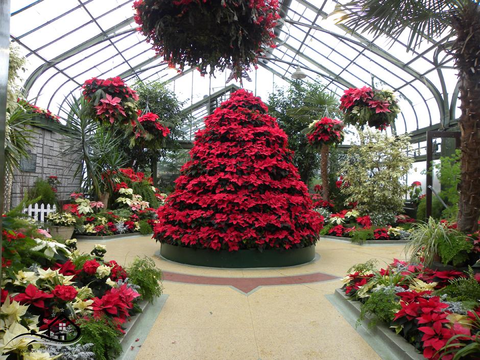 Niagara_Parks_Floral_Showhouse_Christmas.jpg