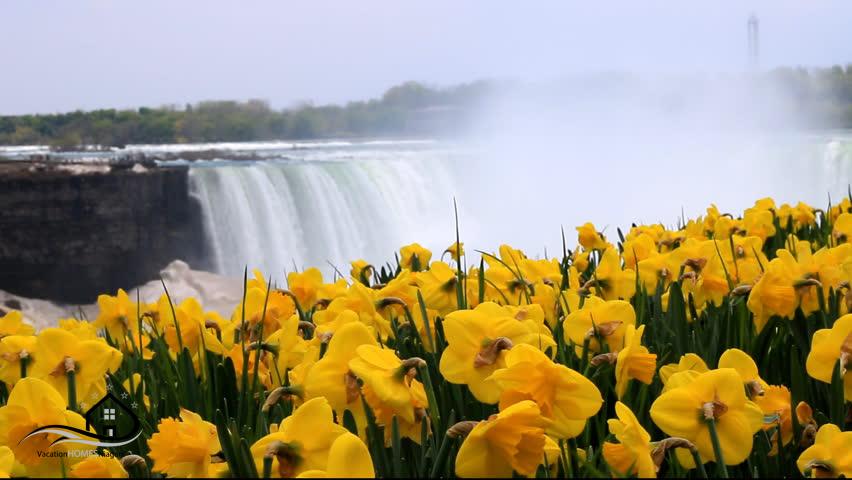 Spring_In_Niagara_Falls_Ontario.jpg