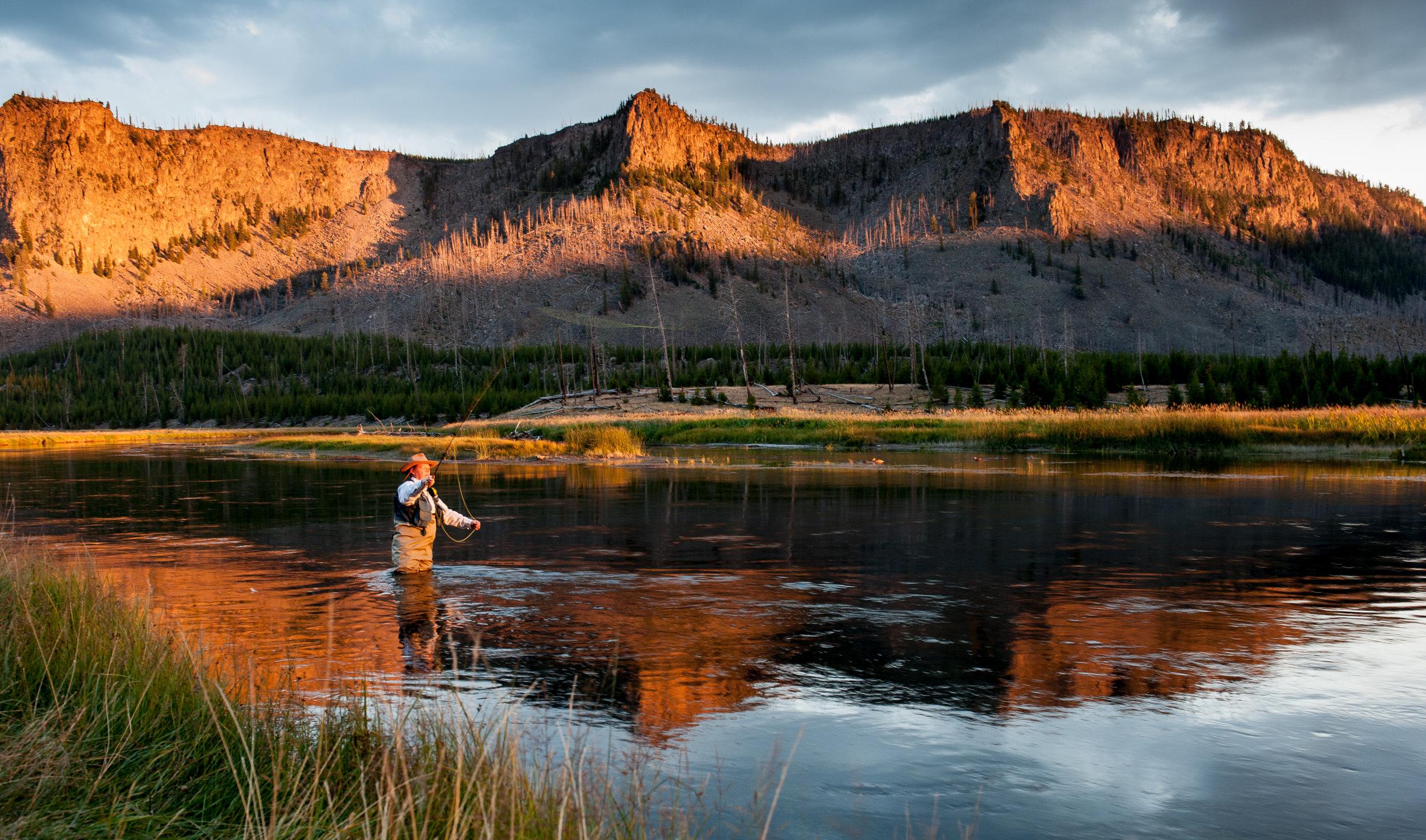 Montana campaign -