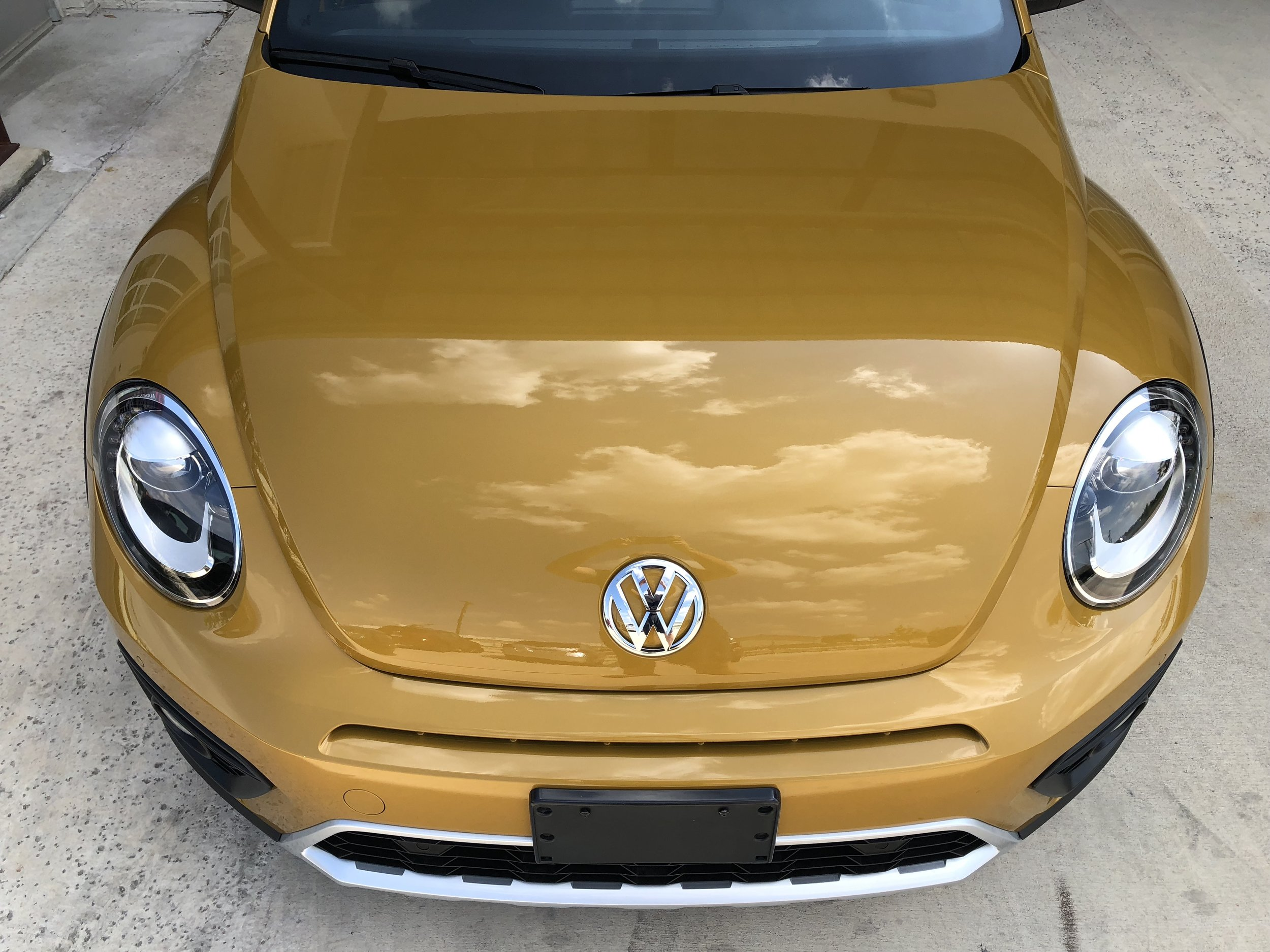 Volkswagen Beetle Paint Protection