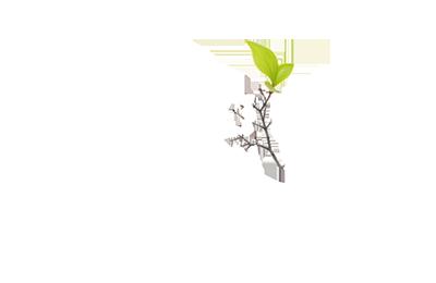 pr-rec-fund.png