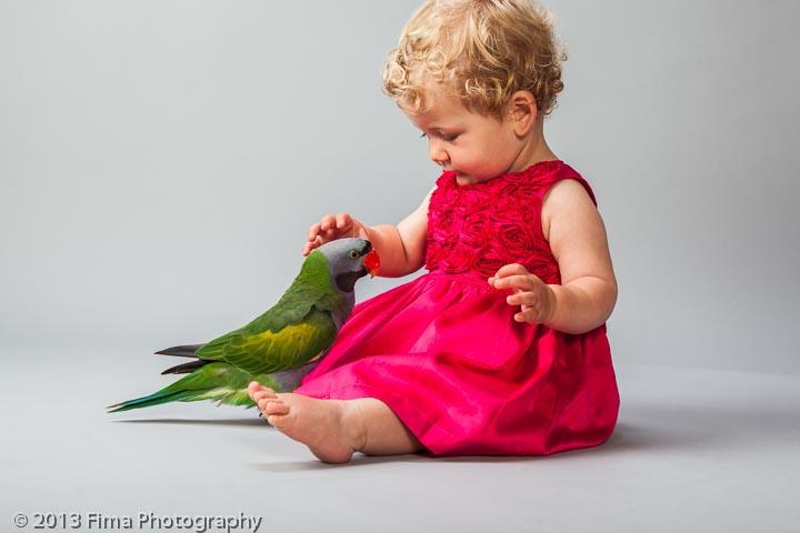 Pet-Photographers.jpg