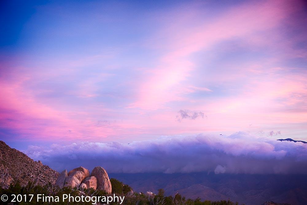 Fima_Photography--2.jpg