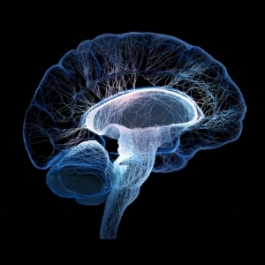 neurotoxins-and-sleep-what-you-need-to-know-2.jpg