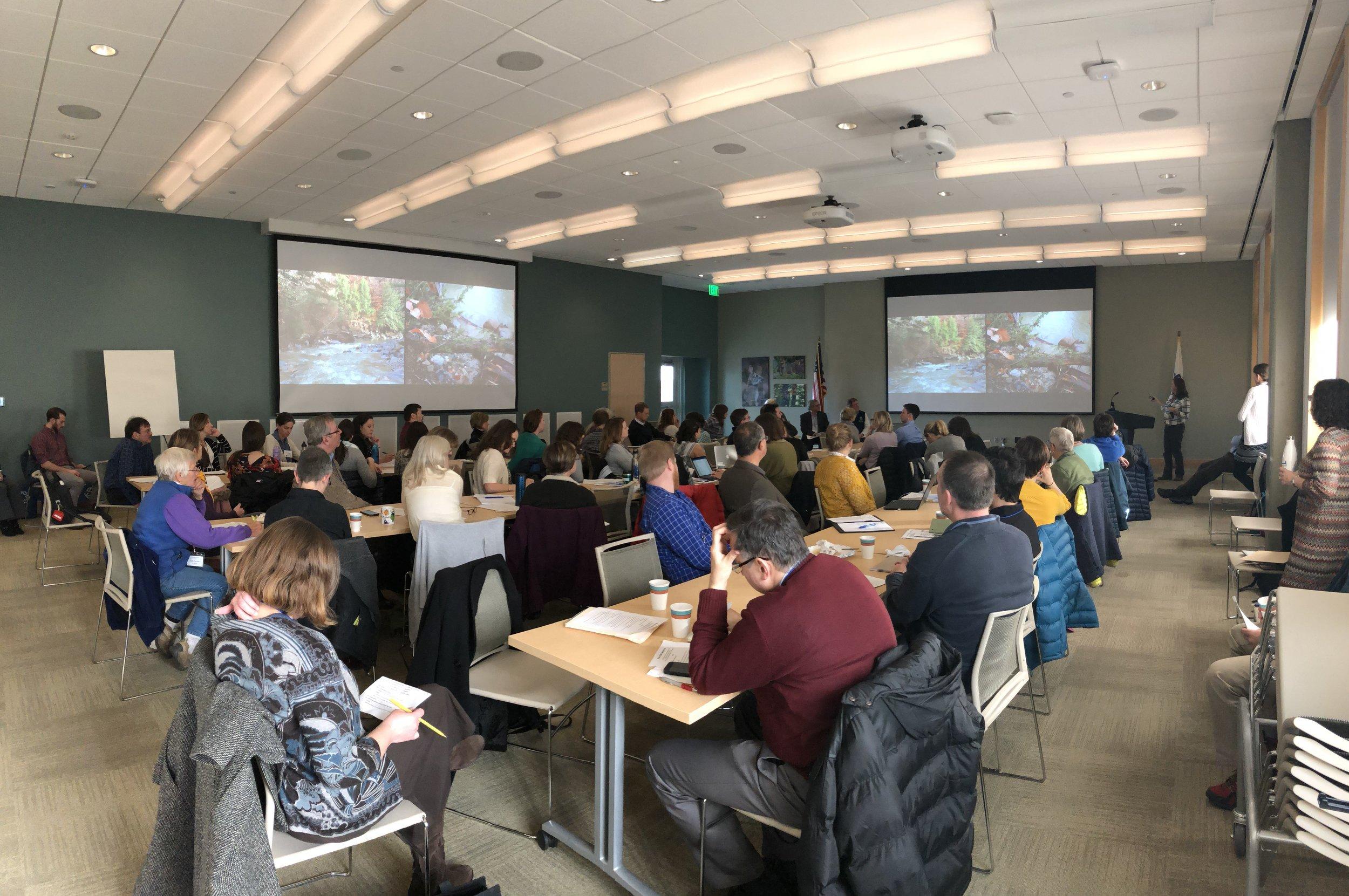 Copy of Audience.jpg