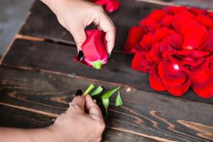 Red Roses(35)-L