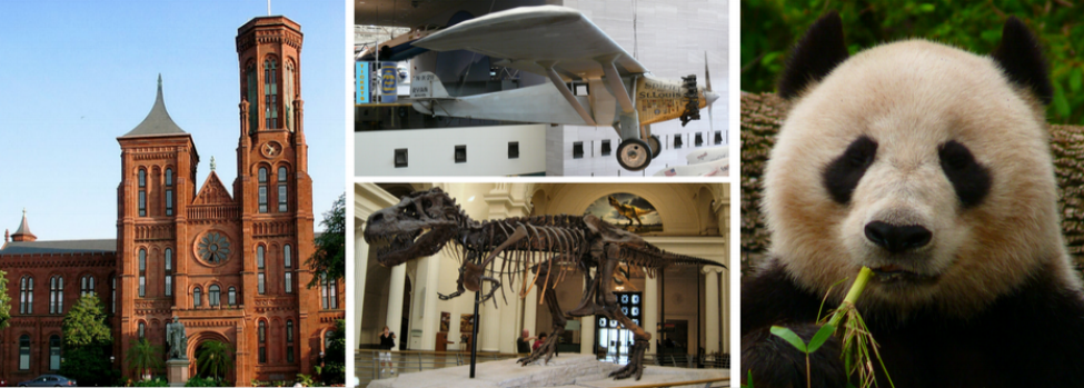 Smithsonian Castle, Plane at Air & Space Museum, T-Rex at Natural History Museum, Panda at Zoo