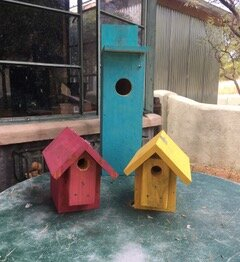 Milk Paint Nest Boxes