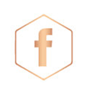 fb-rose-gold-icon.jpg