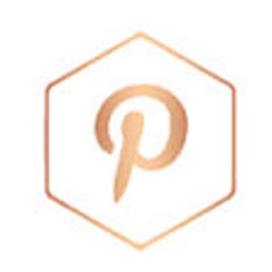 pinterest-rose-gold-icon.jpg