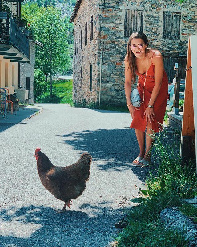 Hen meets hen 🐓