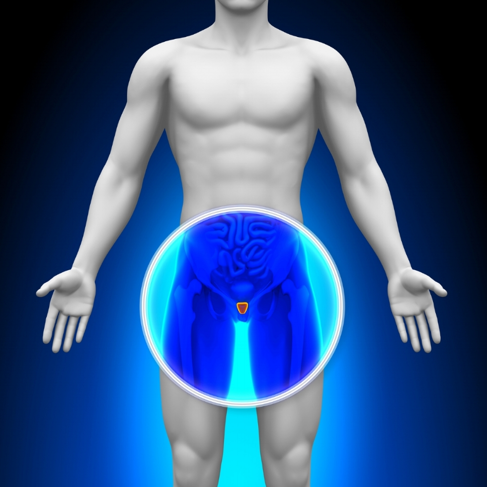 """Prostate Health - Whether we are treating or preventing Prostatitis, Benign Prostatic Hyperplasia (BPH or """"Enlarged Prostate""""), or Prostate cancer, Grand Canyon clinics can help you understand the importance of, and maintain a healthy Prostate through dietary recommendations and supplementation."""