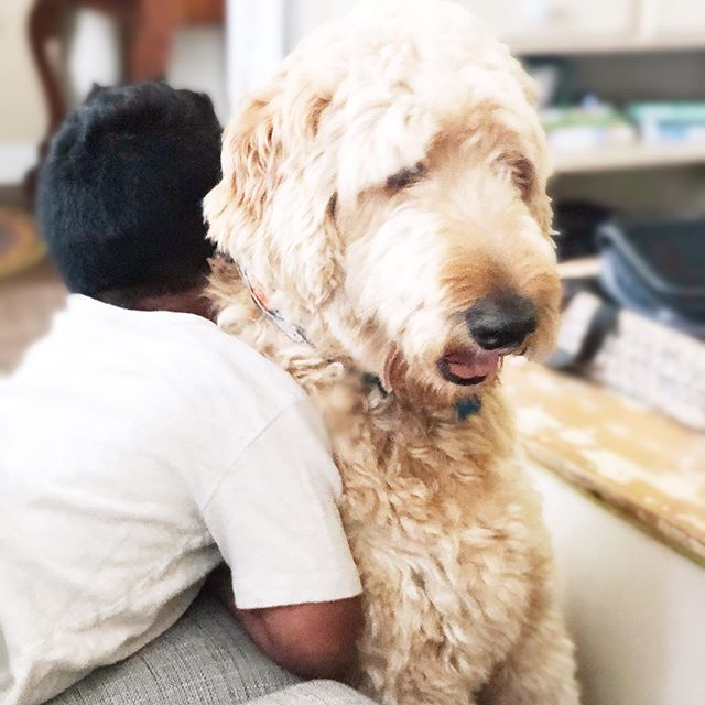 On Saturday's we snuggle. 💕  These two are legit BFF's.👦🏽❤️🐶 I knew my boys would enjoy and benefit from having a pet but I hadn't the foggiest idea how deeply they would fall in love with Bodie.  Off to have some fun and enjoy these last days of summer break. School starts in less than 10 days! What?!?! ☀️ 🏫