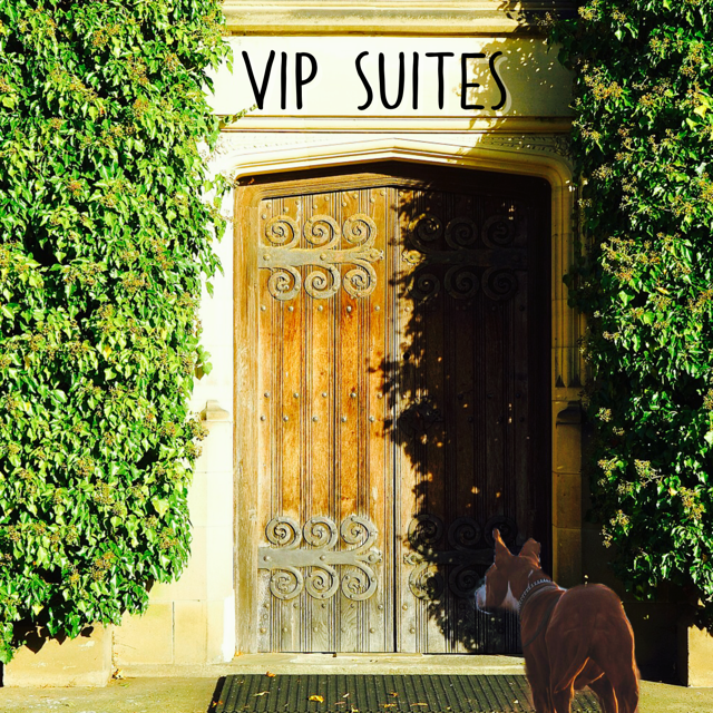 Come check out North Bentwood Veterinary Hospital and Boarding VIP suites