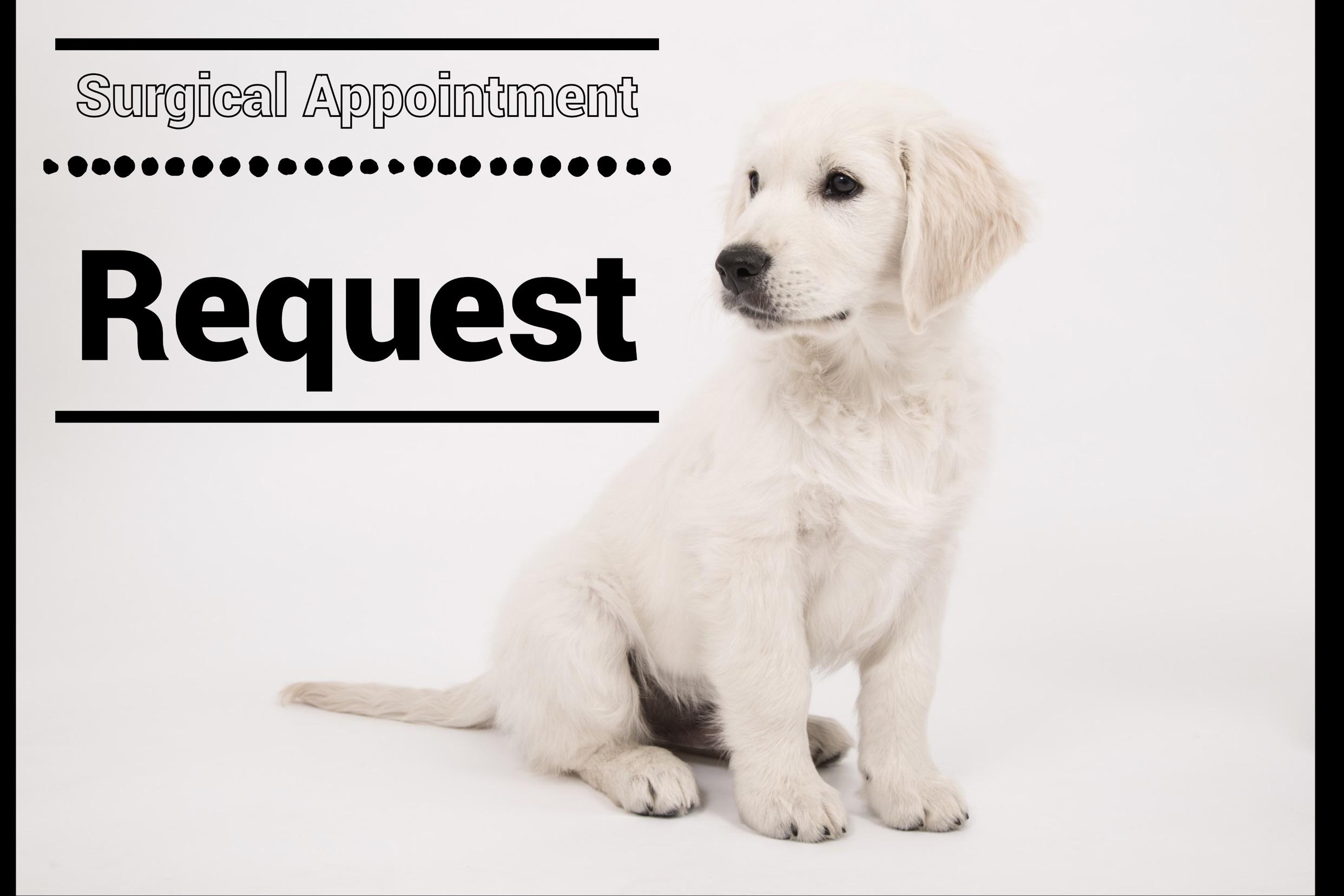 One pet per request - Please fill out a new request per pet