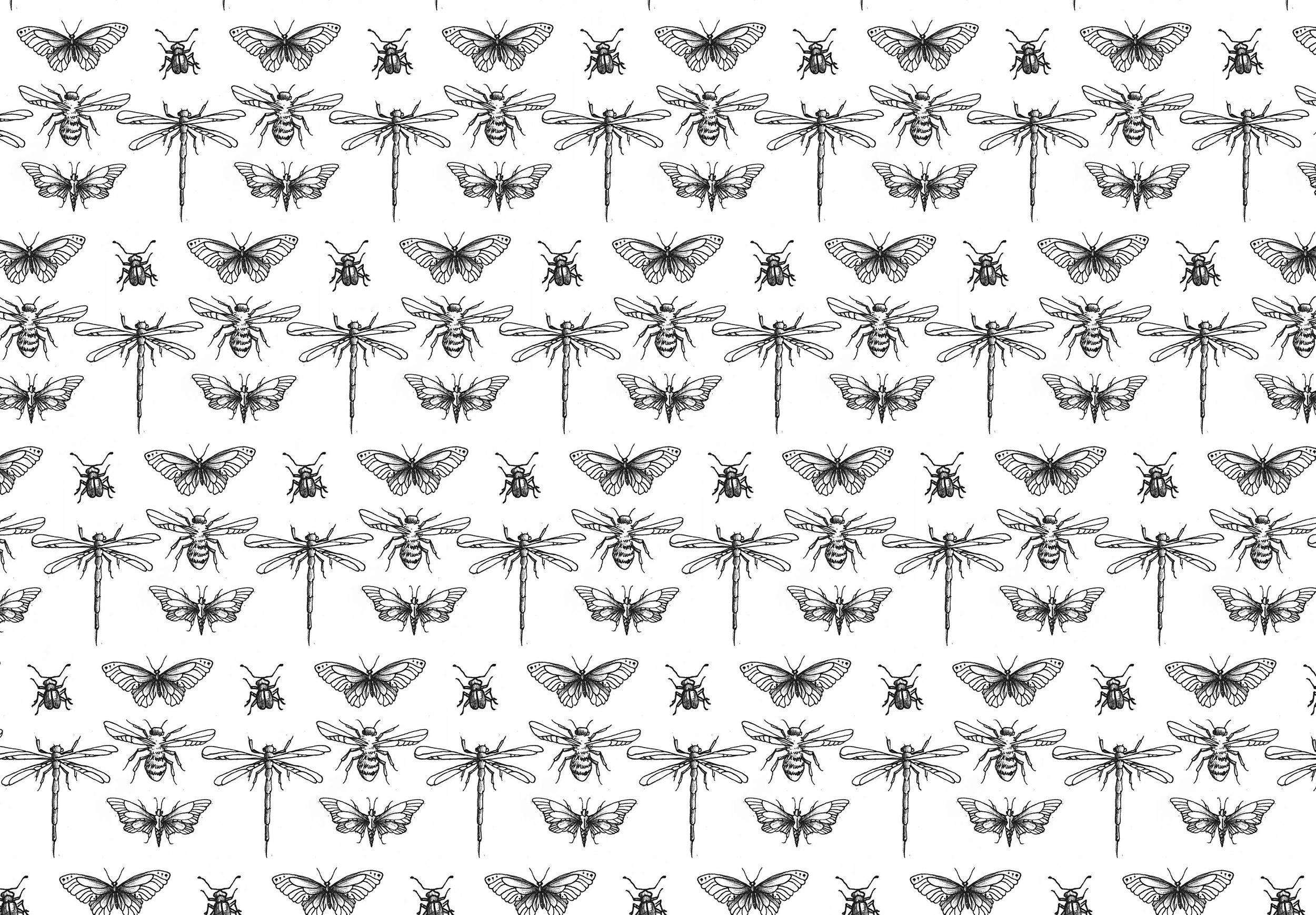 bug pattern.jpg