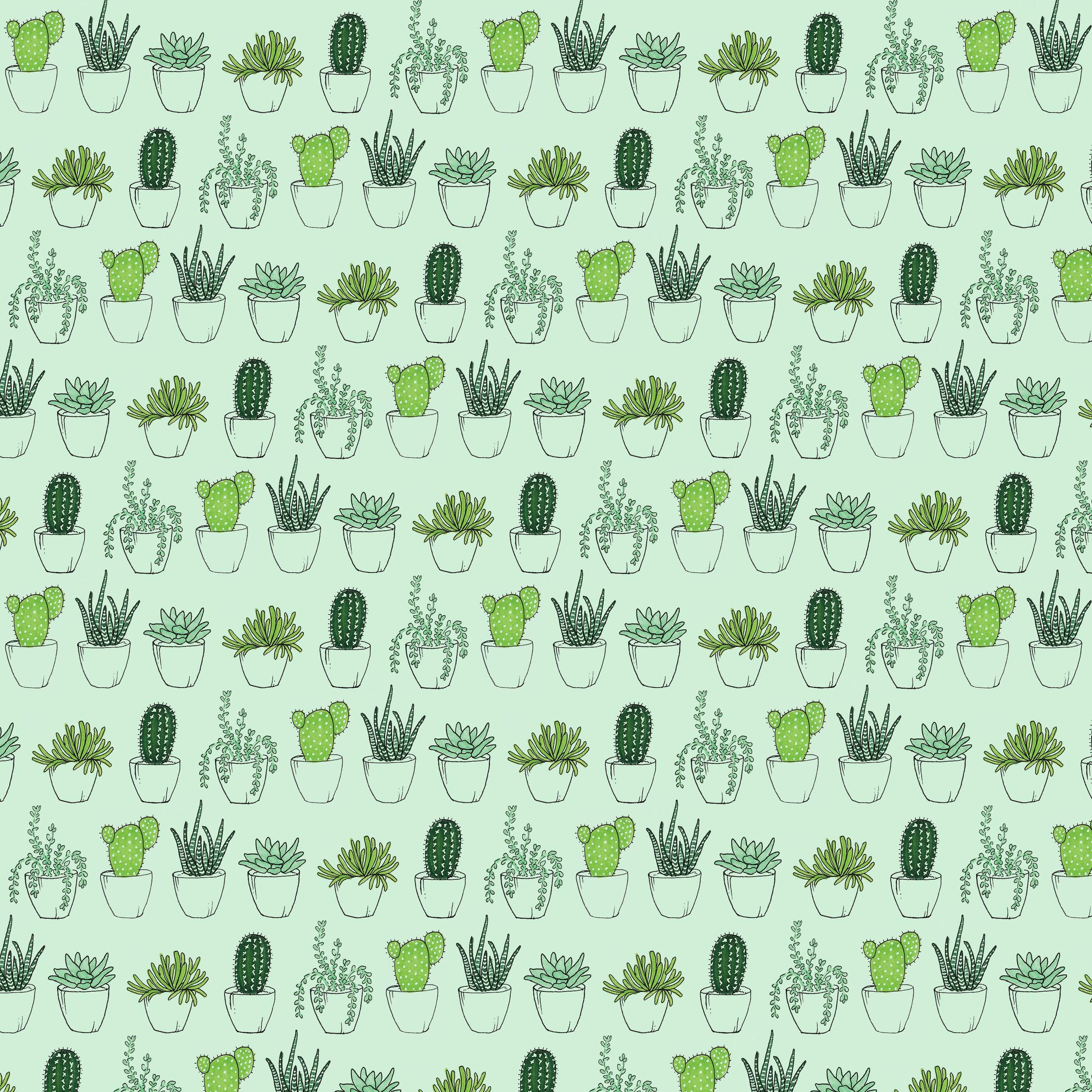 succulent green pattern-01.jpg