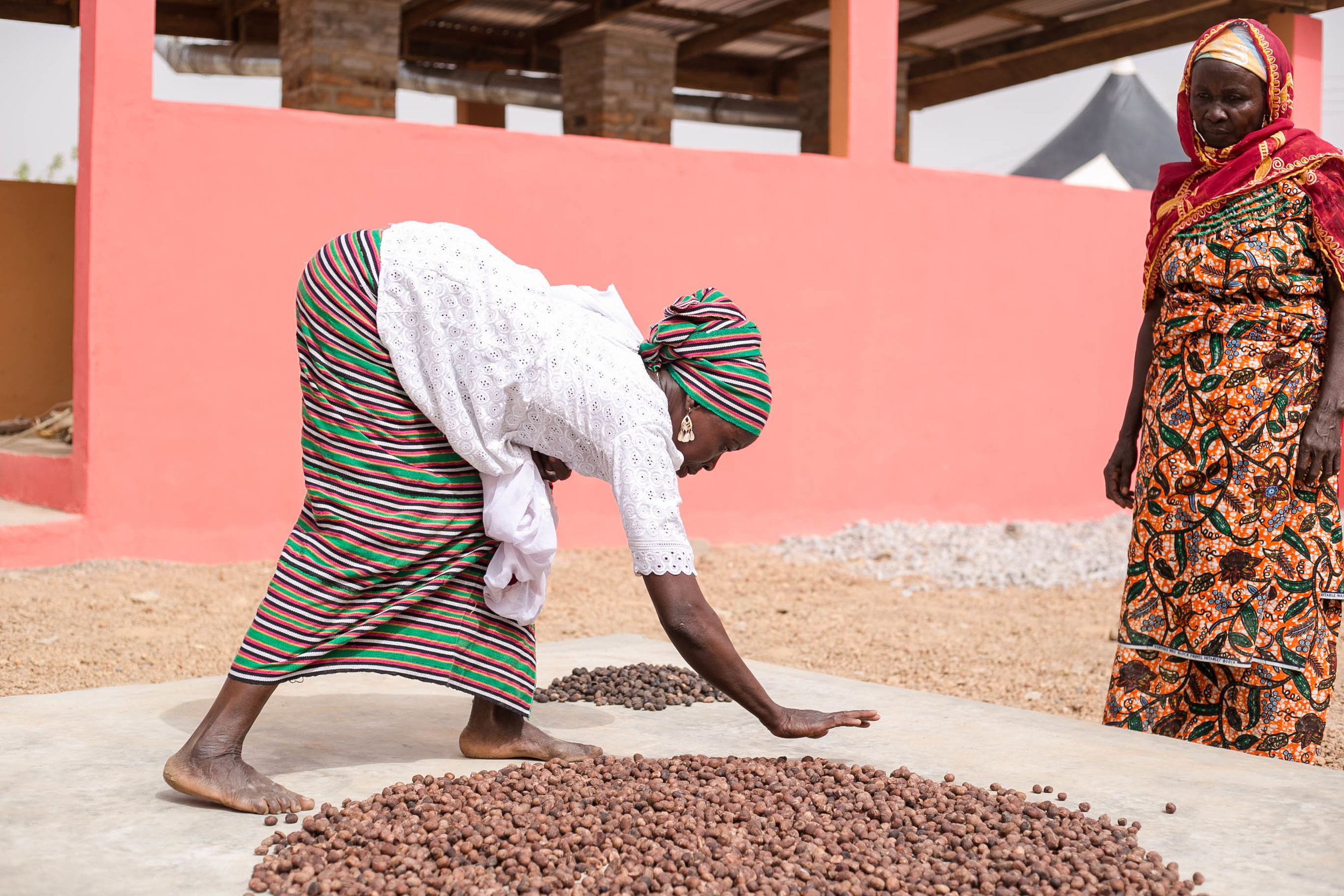 Sorting shea nuts and the Posh pink Shea Sisterhood warehouse and processing center in Gizaa Gundaa, Ghana