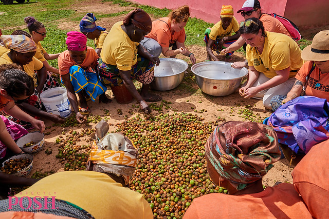 Women from the Shea Sisterhood in Ghana sort shea nuts in the sun to dry for sustainable shea butter.