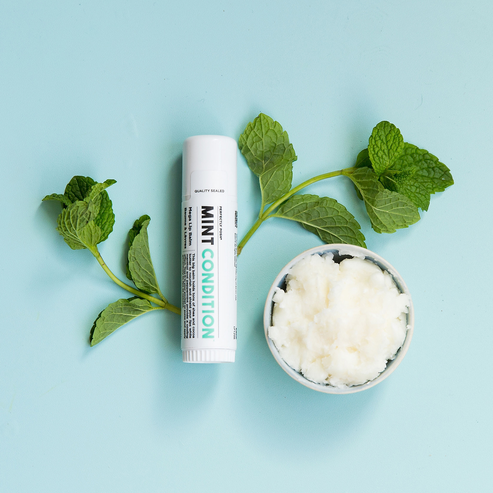 Perfectly Posh Mint Condition Lip Balm with sustainable shea butter for very dry and chapped lips
