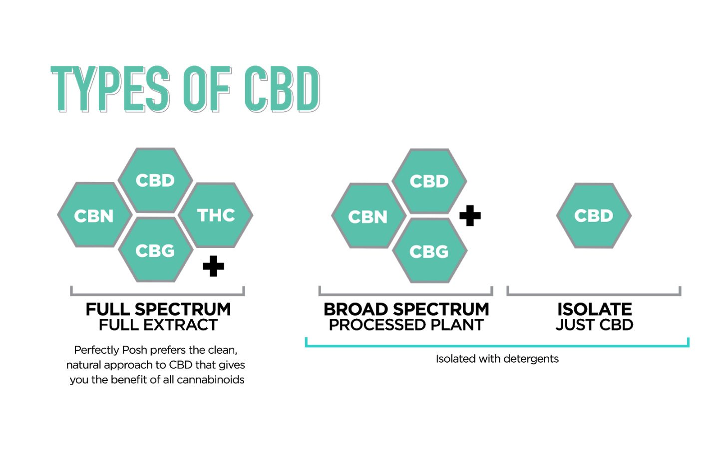 How Is CBD Extracted From Hemp? Which CBD Extraction type Is Best?