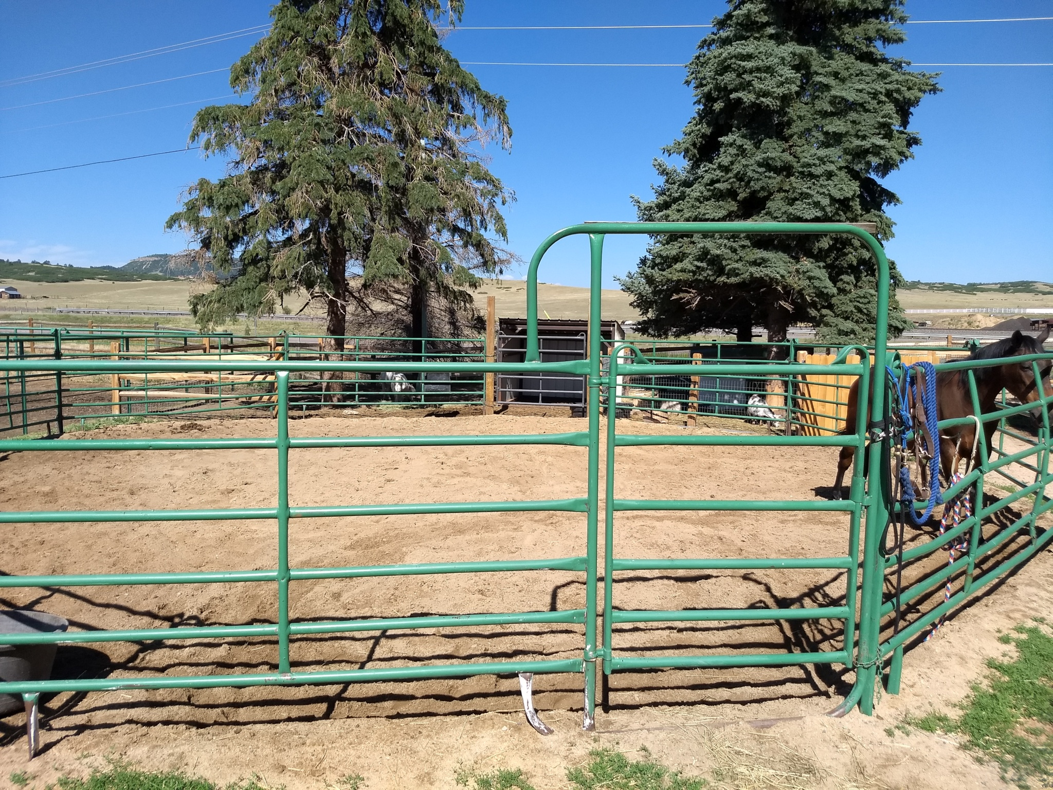 Nate and Jane did a great job making some of our railing fences look like new!