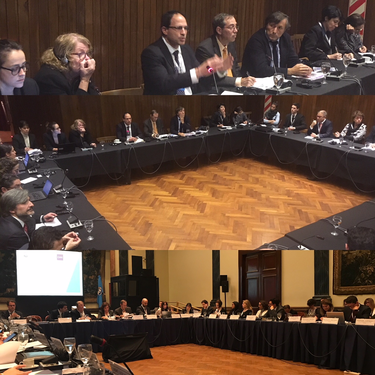 OECD BA pics.jpg