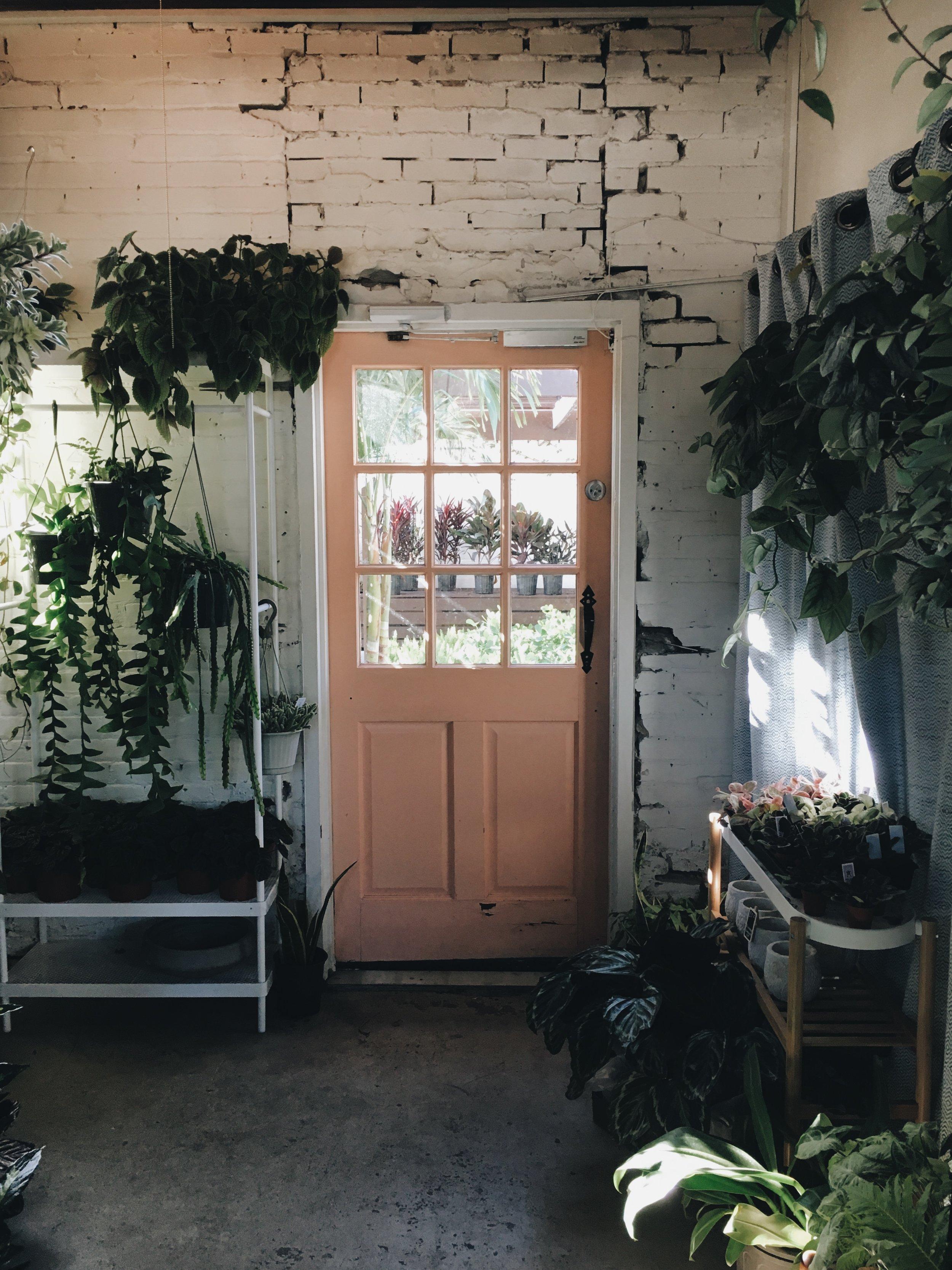 Fancy Free Nursery |1502 N Florida Ave, Tampa, FL 33602