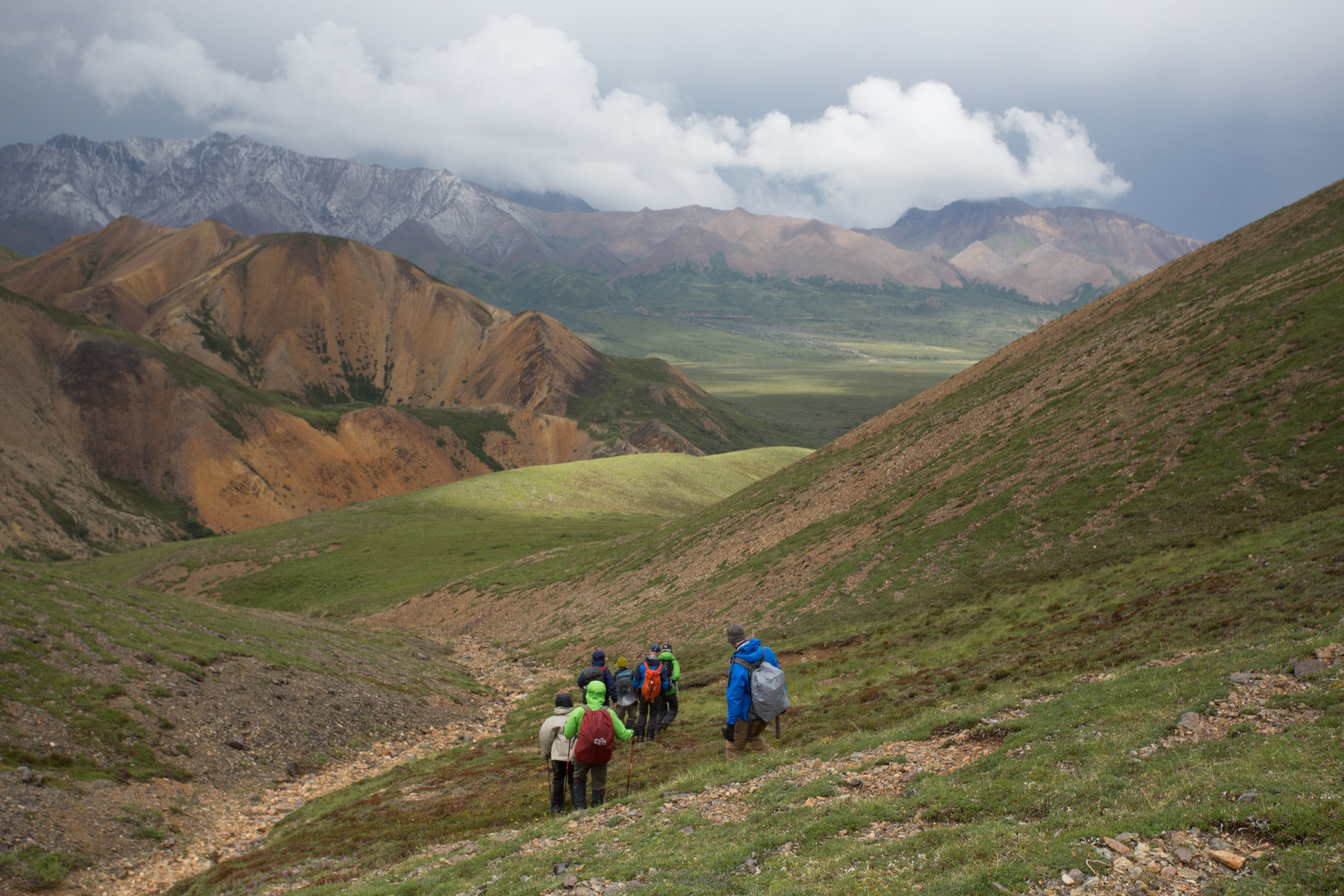 2015 Participants on a day-hike in Denali.