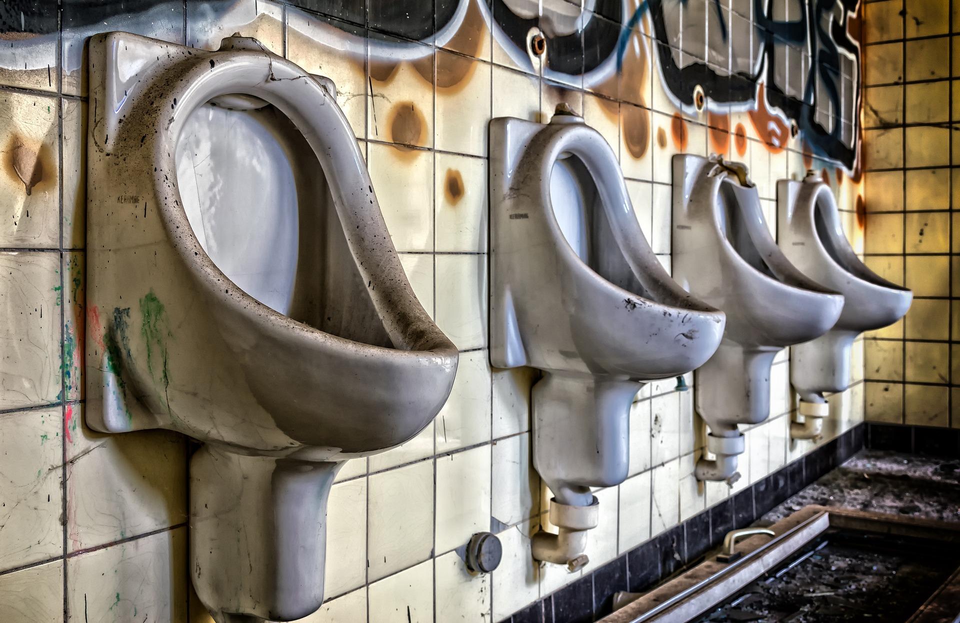 toilet-2789736_1920.jpg