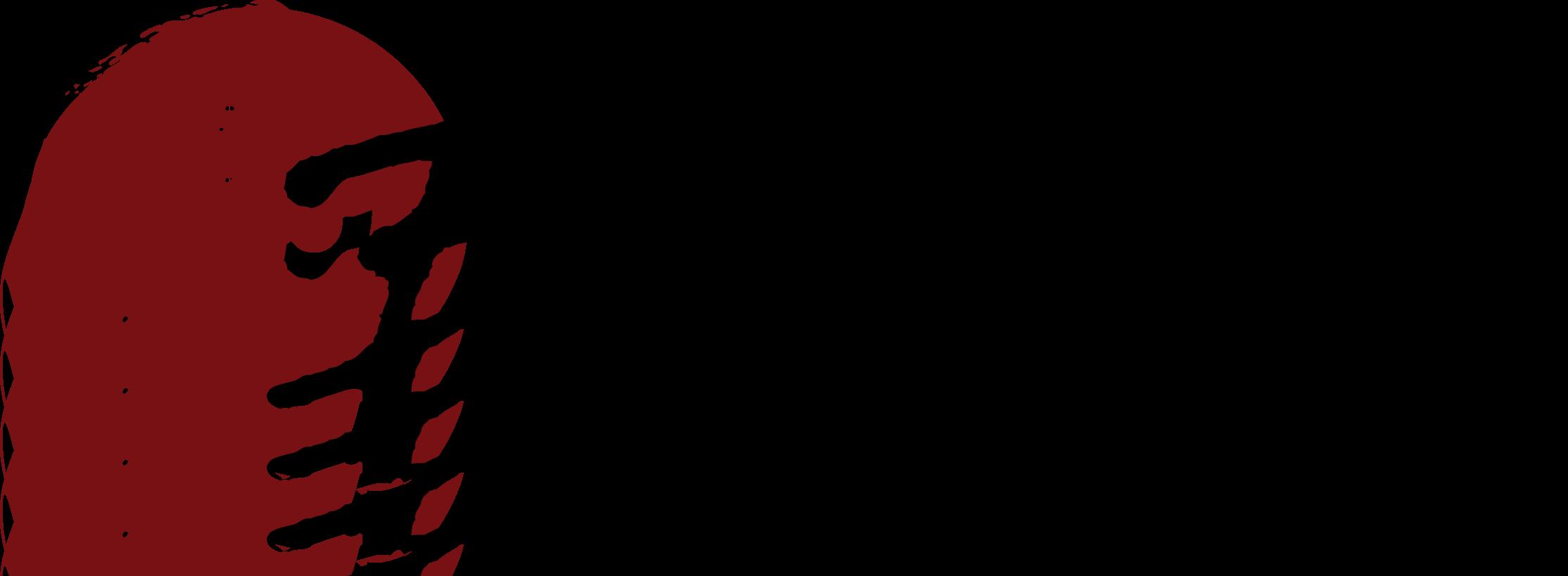 bigstuf_logo.png