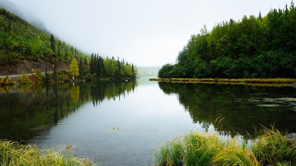 water-1246643_960_720.jpg