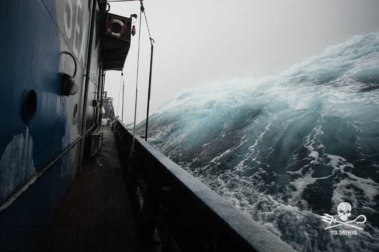 From the deck of the  M/Y Steve Irwin , a large swell kicks up during a fierce storm in the Southern Ocean. Waves around the continent of Antarctica can reach up to 20-30 metres with cyclonic-force winds. Antarctica is truly one of the world's last great wildernesses.