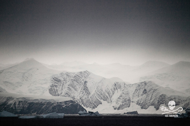 Cape Adare in east Antarctica. Taken from the M/Y Steve Irwin during Operation Relentless in 2014-2015 when patrolling the Southern Ocean Whale Sanctuary.