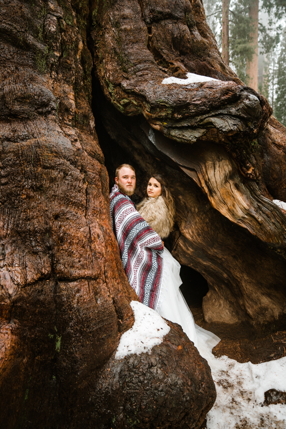 Kings Canyon Elopements by Bessie Young Photography - Sequoia and Kings Canyon National Park